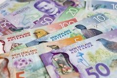 Neuseeland-Geld lizenzfreie stockbilder