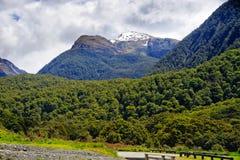 Neuseeland, Haast-Durchlauf stockfotos
