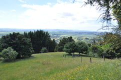 Neuseeland-hilside lizenzfreies stockbild