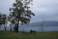 Neuseeland-Landschaft durch den Fluss stockfotografie