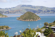 Neuseeland-` s Vorort Stockfotografie