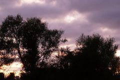Neuseeland-Sonnenaufgang in Waikato stockbild