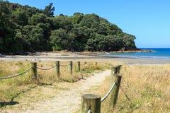 Neuseeland-Strand, Sommer Zugriffsweg zu einer reizenden Bucht stockbilder