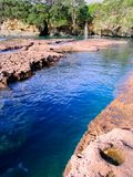 Neuseeland-Wasserfall Stockbilder
