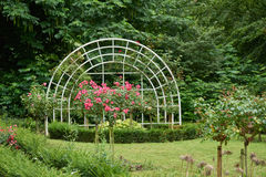 NEUSS, ΓΕΡΜΑΝΊΑ - 8 ΑΥΓΟΎΣΤΟΥ 2016: Τριαντάφυλλα delect δημόσια Rosengarten στοκ εικόνες με δικαίωμα ελεύθερης χρήσης
