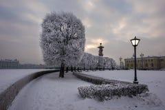 Neva Embankment St Petersburg Lizenzfreie Stockfotos
