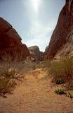 Nevada dale czerwone wzgórza Obraz Royalty Free