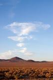 Nevada desert. Open Nevada desert in the summer stock photo