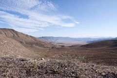 Nevada desert Royalty Free Stock Photos