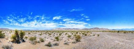 Nevada Desert Beauty Imagen de archivo