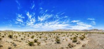 Nevada Desert Beauty. June - Panoramic photo, USA Royalty Free Stock Image