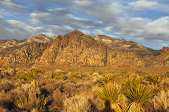 Nevada Desert Dawn. Warm sunrise light at La Madre peak in Nevada's Red Rock National Conservation Area near Las Vegas Stock Photo