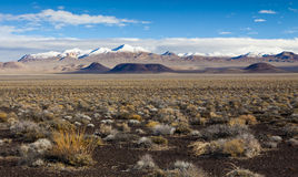 Nevada Desert Landscape Royalty Free Stock Photos