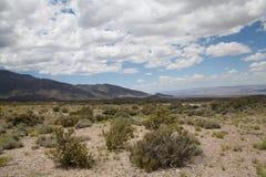 Nevada Desert med berg royaltyfria foton
