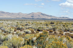 Nevada Desert Scenic Royalty Free Stock Photos