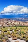 Nevada Desert Thunderstorm imagens de stock royalty free