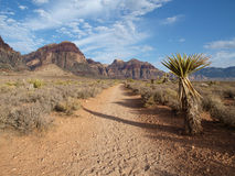 Nevada Desert Trail Stock Photo