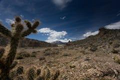 Nevada góry, usa Zdjęcie Royalty Free