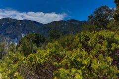 Nevada góry, usa zdjęcia stock
