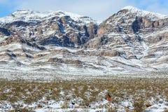 Nevada gór autostrada 15 Zdjęcie Royalty Free