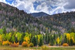 Nevada-Great Basin National Park-Wheeler Peak Trail Stock Photo