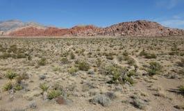 Nevada Landscape fotografía de archivo libre de regalías