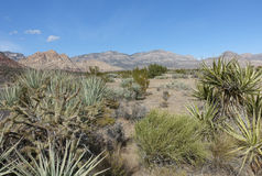 Nevada Landscape imagen de archivo