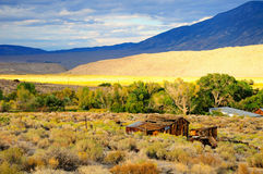 Nevada landscape. Stock Photography