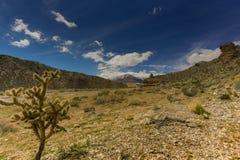 Nevada Mountains, los E.E.U.U. foto de archivo