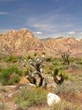 Nevada Panorama Stock Photos