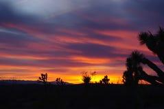 Nevada sunset Stock Image