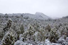 Nevada USA spring snow in the mountains Stock Photo