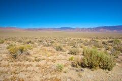 Nevada vildmark Arkivbilder