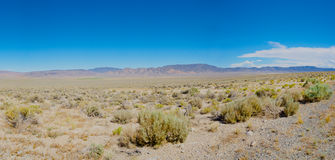 Nevada Wilderness Stock Afbeeldingen
