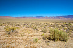 Nevada Wilderness Stock Images