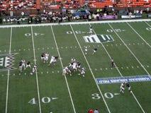 Nevada Wolf Pack-Fußballspieler lässt Ball hinunter das Feld am Th laufen Stockbild