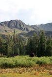 nevadas山脉视图 免版税库存照片