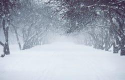 nevadas Foto de archivo libre de regalías