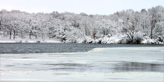 Nevadas del lago Pierce - Illinois Imagen de archivo libre de regalías