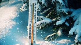 Nevadas en el bosque del invierno, termómetro en la nieve metrajes