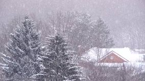 Nevadas en el invierno en la ciudad, mañana de la Navidad nevosa suave con nieve que cae almacen de video