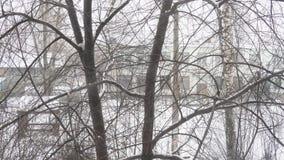 Nevadas en la ciudad en un día de invierno nublado, ramas sitiadas por la nieve de árboles metrajes