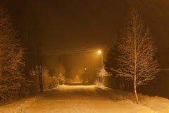 Nevadas pesadas en la noche. Región de Moscú. Rusia. Fotos de archivo libres de regalías