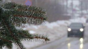 nevadas Ramas del abeto cubiertas con nieve y descensos El coche va en el camino almacen de metraje de vídeo
