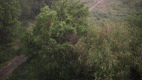 Nevadas y fuertes lluvias en verano En fondo son los árboles verdes, hierba, trayectoria almacen de video