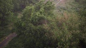 Nevadas y fuertes lluvias en verano En fondo son los árboles verdes, hierba, trayectoria almacen de metraje de vídeo