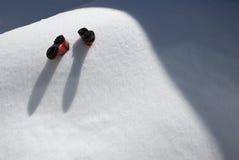 Nevado abaixo Imagem de Stock