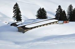 Nevado adentro Foto de archivo libre de regalías