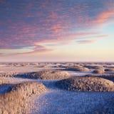 Nevado arboledas fotografía de archivo