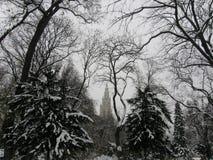 Nevado Austria fotos de archivo libres de regalías